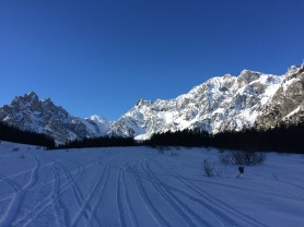 Blick ins Wimbachgries