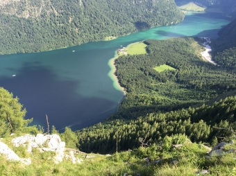 Blick vom Rinnkendlsteig auf den Königssee